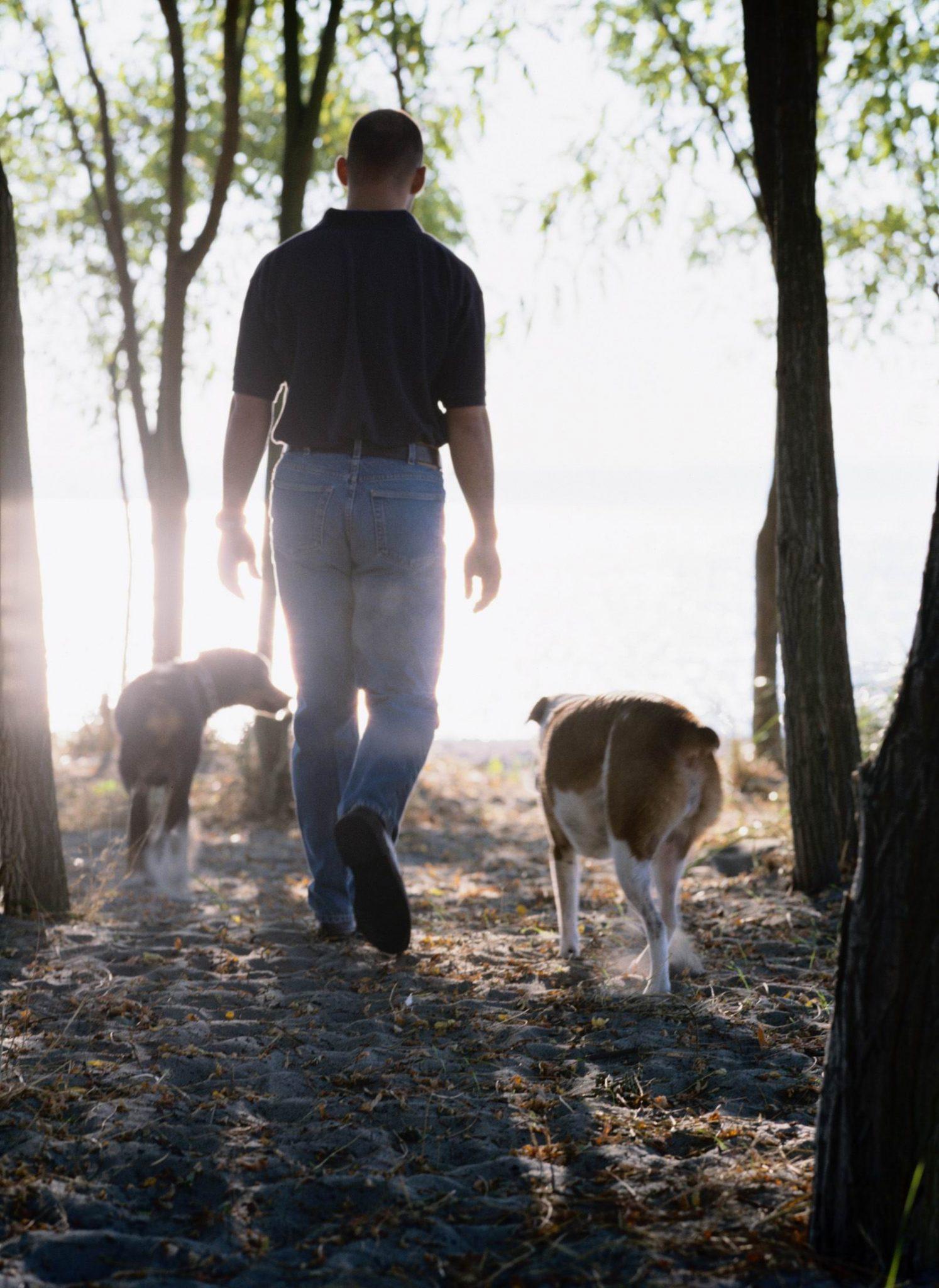 Tick & Flea Season 2013 – Protect Your Pets!