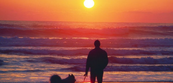 Dog and Man at ocean sunset