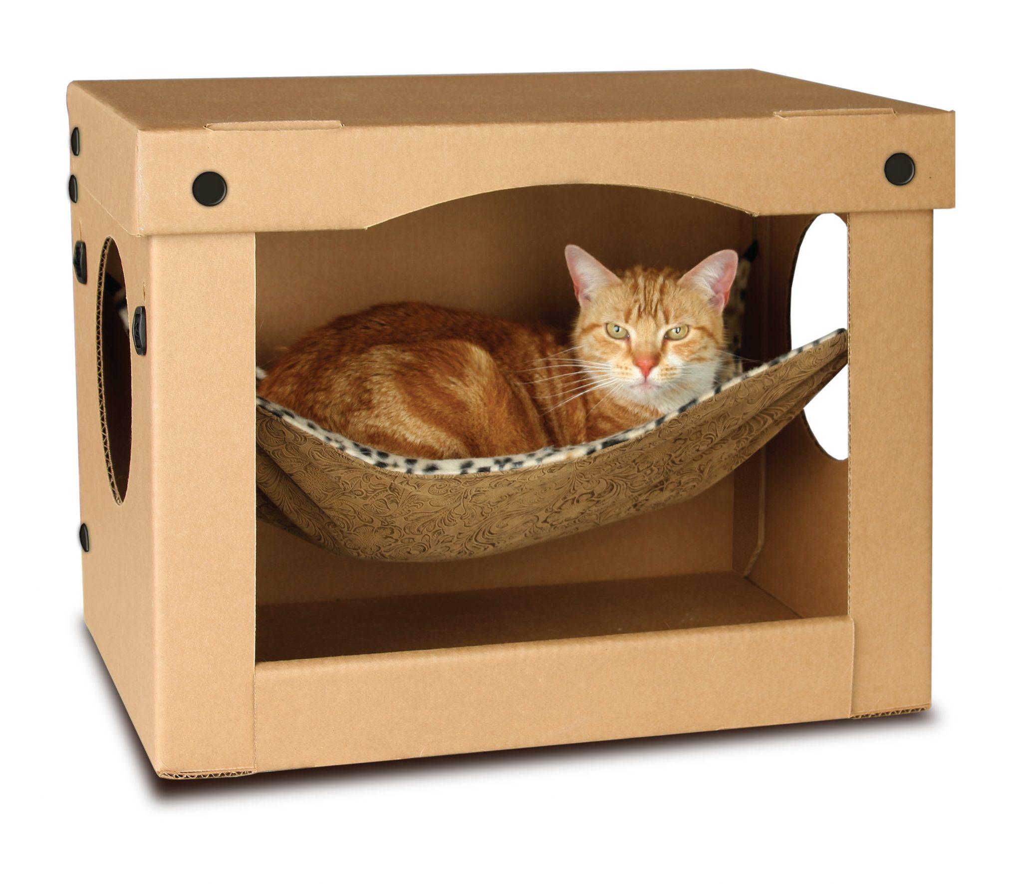 Как сделать кроватку для котенка из коробки