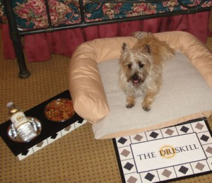 Princess Chloe Chanel enjoys a pampered night at The Driskill Hotel in Austin. Photo courtesy of The Driskill Hotel, Austin