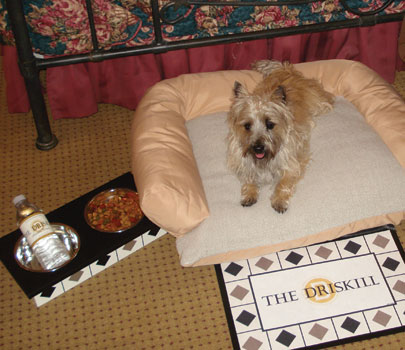 Princess Chloe Chanel Enjoys A Pampered Night At The Driskill Hotel In Austin Photo Courtesy