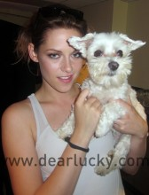 Twilight Star Kristen Stewart is well aquainted with all of Washington State's best kept secrets, including Lucky Diamond!
