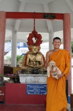 Thailand - Buddha's Animal Kingdom