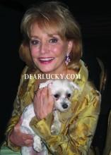 Barbara Walters got Lucky!