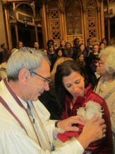 """Lucky is blessed by a rabbi at the """"Blessing Of The Animals."""" December 2011."""