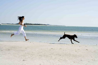 Summer won't last forever! Get out there with your furry companion!