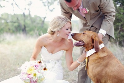 dogs-in-weddings-11