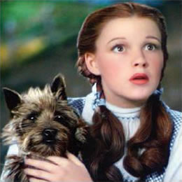 emerald-dorothy-and-toto-pl.jpg