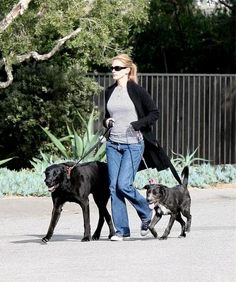 Photo of Julia Roberts & her Dog Satchmo & Diego