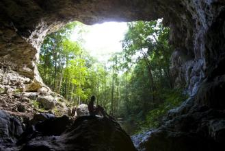 A breathtaking view of the Belize rainforest from Crystal Cave in Belmopan, Belize.