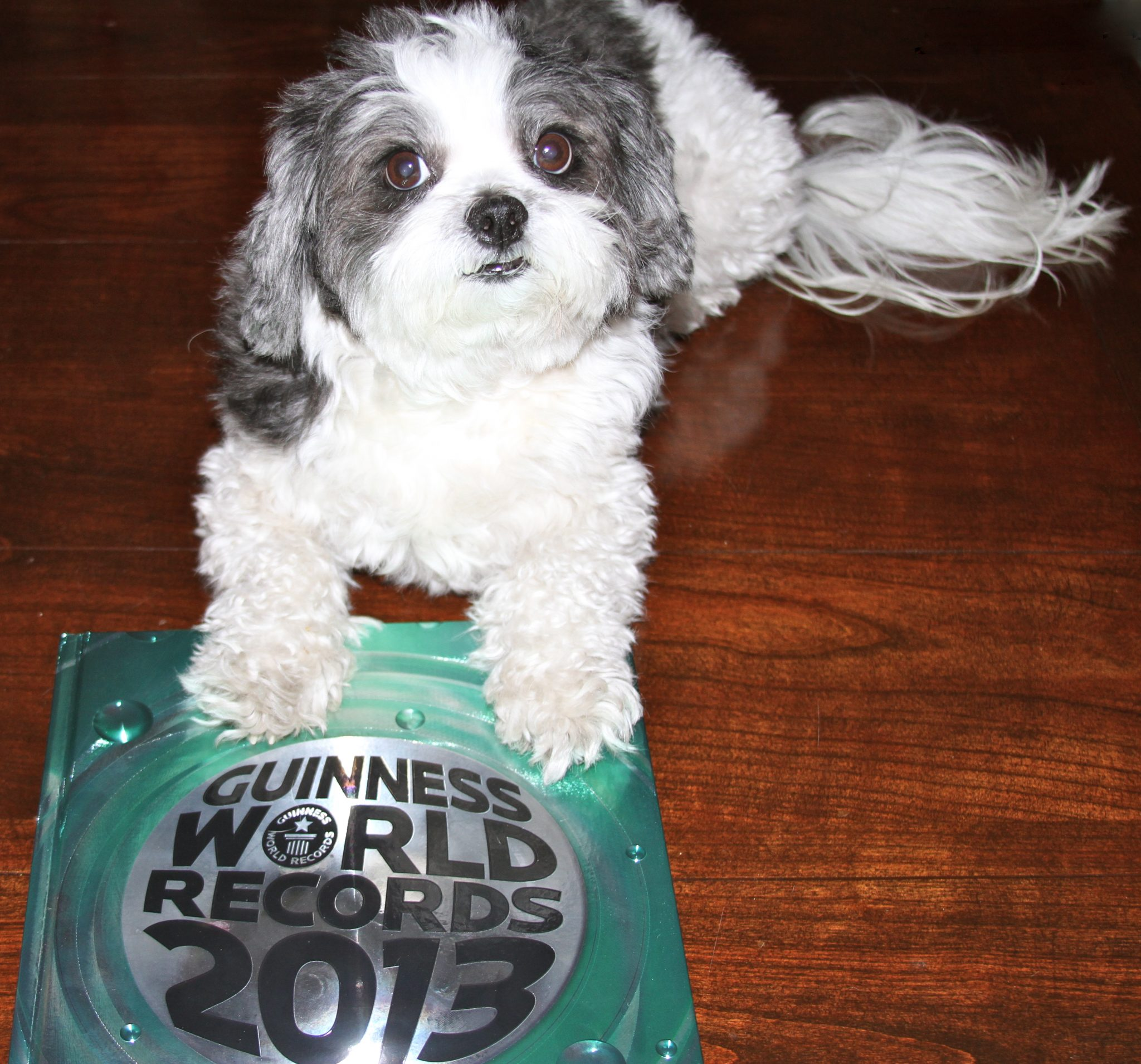 Happy Guinness World Record Day! Baby Hope Celebrates Her Legacy with the Guinness World Records Book!