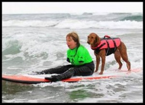 The Dish on Hero Dog Ricochet— From Service dog to SURF dog!
