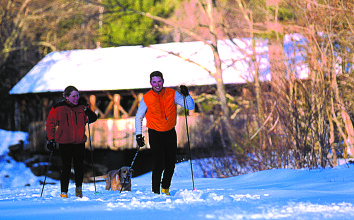 Pet Friendly Resorts Skiing with Dogs