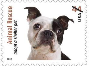 rescue Adoption postage Stamp