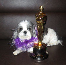 Baby Hope still has HOPE one day she will earn an Oscar:)
