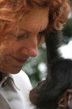 Claudine André and a Bonobo. Photo credit; Friends of Bonobos