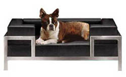 Philipp Plein's dog bed