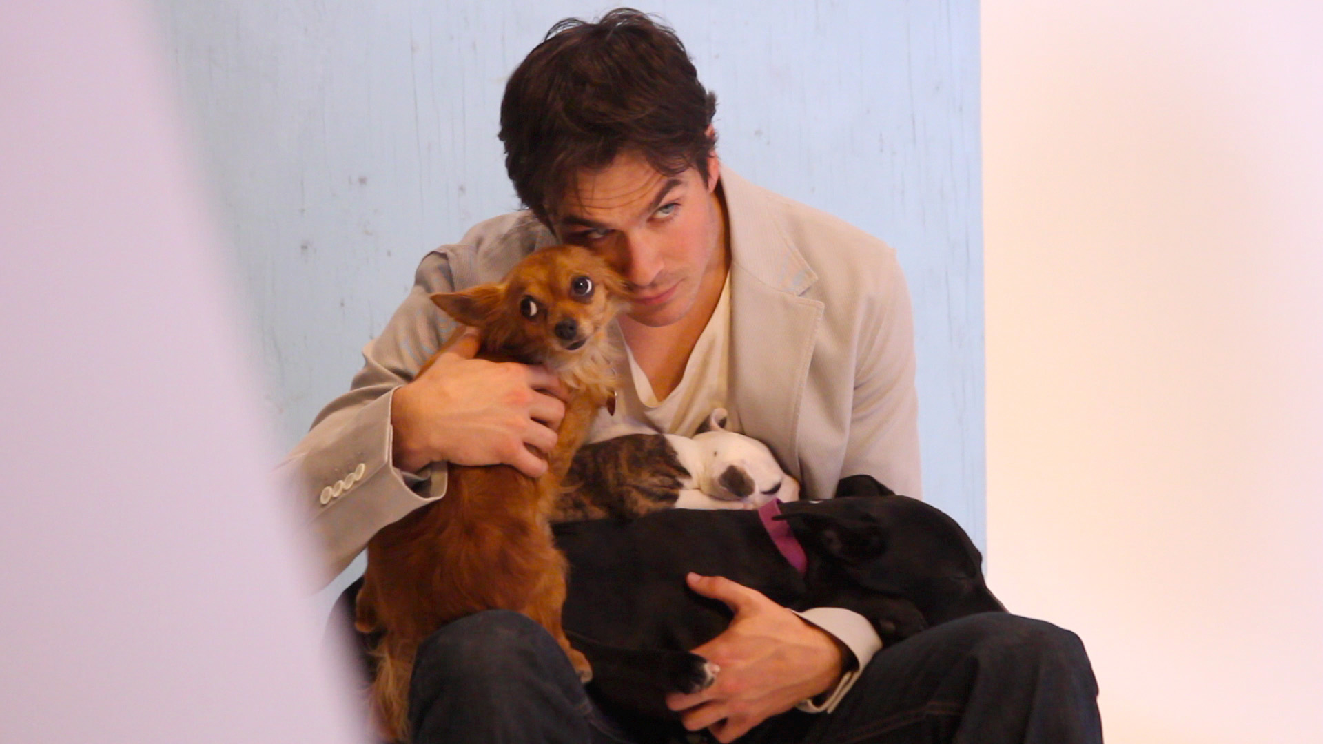 Animal Advocate And Vampire Diaries Star Ian Somerhalder Partners With Model Josie Maran!