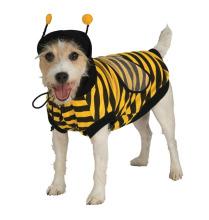 dog bumble bee costume cute