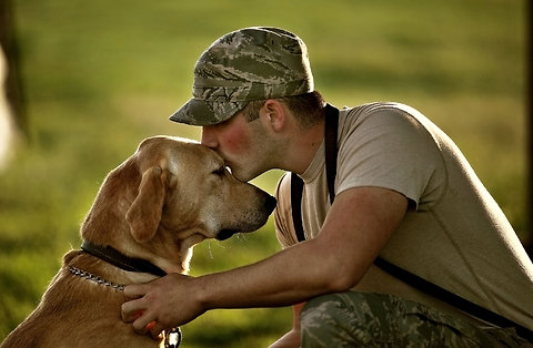 In Light of the Fort Hood Shooting –  Join Us In Saving One Veteran And One Dog At A Time!