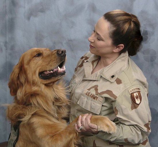 Help! Rescue A Service Dog For A Nashville Veteran With PTSD – That's Music to Our Ears!