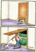 Dan Reynolds, cartoon.