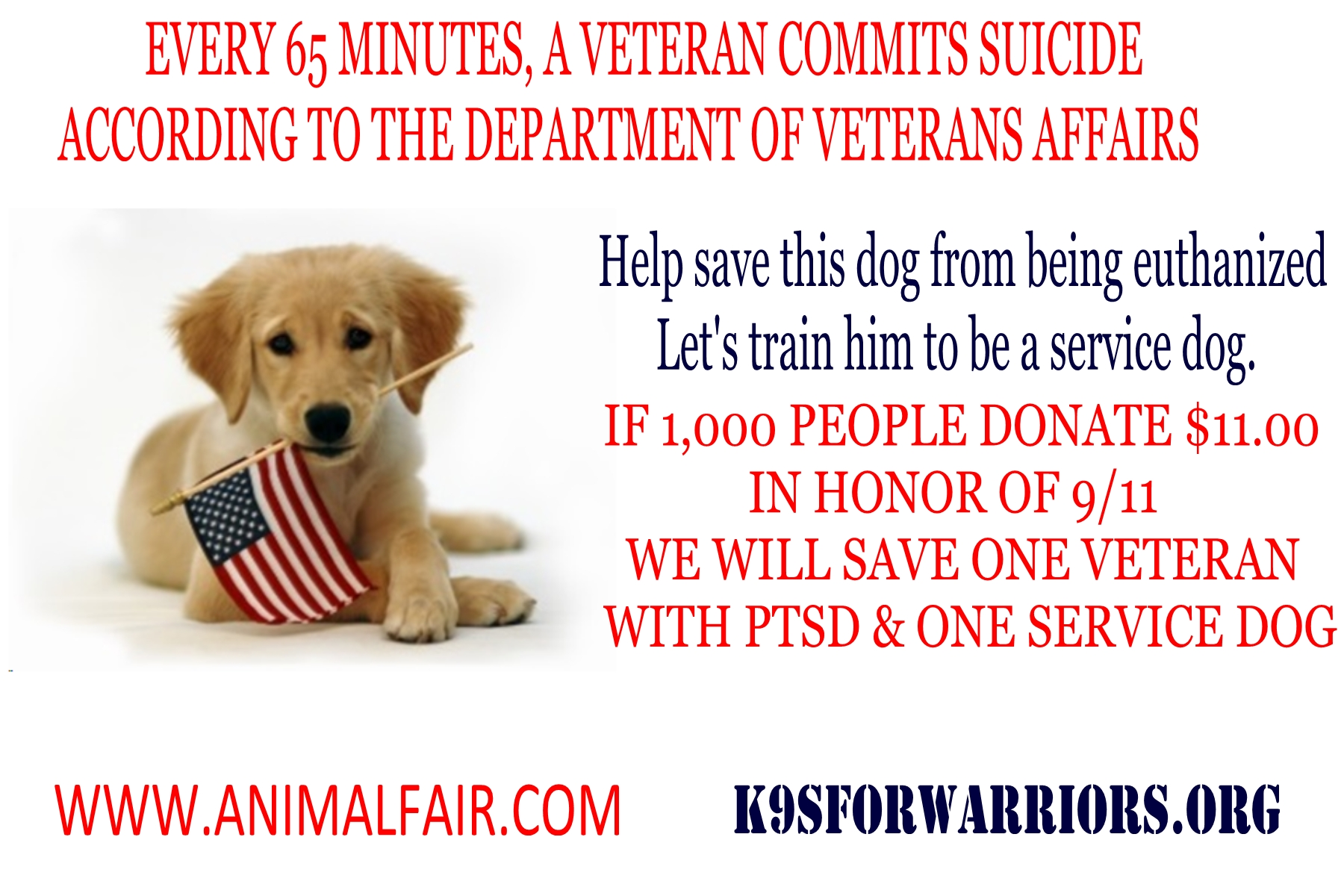 In Honor of 9/11 – Donate $11 To Make A Veteran's Dream Come True… @k9sforwarriors