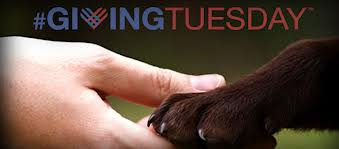 Bark About Giving Back For #GivingTuesday!