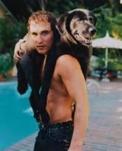 Mat&dog