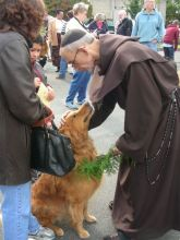 A dog is blessed at a ceremony in honor of St. Francis of Assisi.