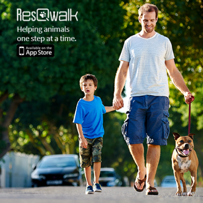 walk a dog for resqwalk