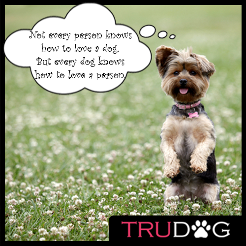 Who's Dog Is Ready To Be Healthy! Is Your Dog Ready For A Raw TRUDOG Diet?