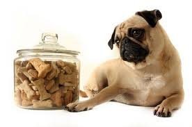Dog-Biscuits-2