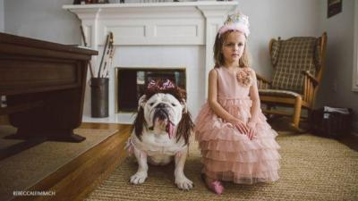 HT-Bulldog-Little-Girl-EM-16x9-608-jpg_221813