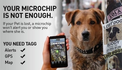 Avoid Trackingehow furthermore Pet Tracking likewise Mast Bracket Gwind Race furthermore Tracking also Pit tag. on gps tracking devices for dogs