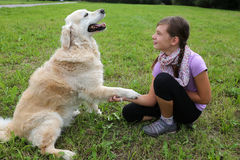 dog-shaking-hands-child-meadow-34866123