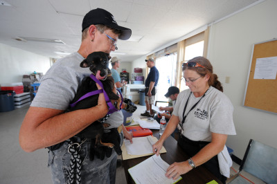 FEMA_-_38421_-_A_Volunteer_holds_a_dog_being_checked_in_to_a_temporary_kennel_in_Texas