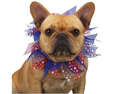Patriotic-Dog-Scrunchie
