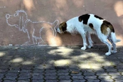dog-sniffing-cartoon-dogs-butt