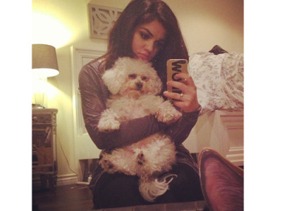 lucy hale with her dog jack