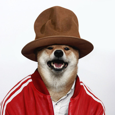 I wanna be just like Pharrell.... I got it! Call me FUR-ell.