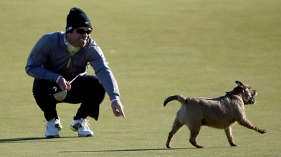 Looks like that dog thinks he can beat Pro. Golfer, John Casey, at the game!