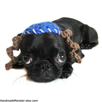 Cute Dog in Hannukah Outfit