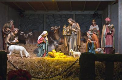 Animals at the Nativity