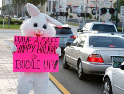 Not a real bunny, but you get the picture! Buckle up!
