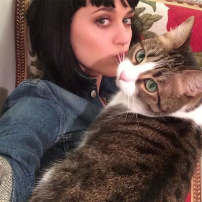 Katy Perry with cat Kitty Purry