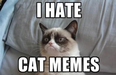 Grumpy-cat-meme-1