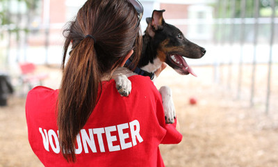 Volunteer Image with Dog
