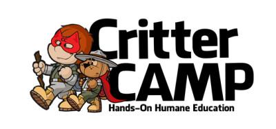 Summer Camp For Kids 2015