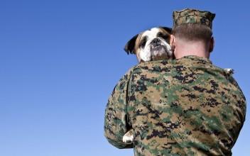 veteran-service-dog-ftr